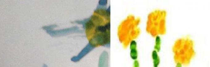 "Proyeksikan bunga dalam kehidupan taman kanak-kanak kita. ""Bunga kirmizi kami"""